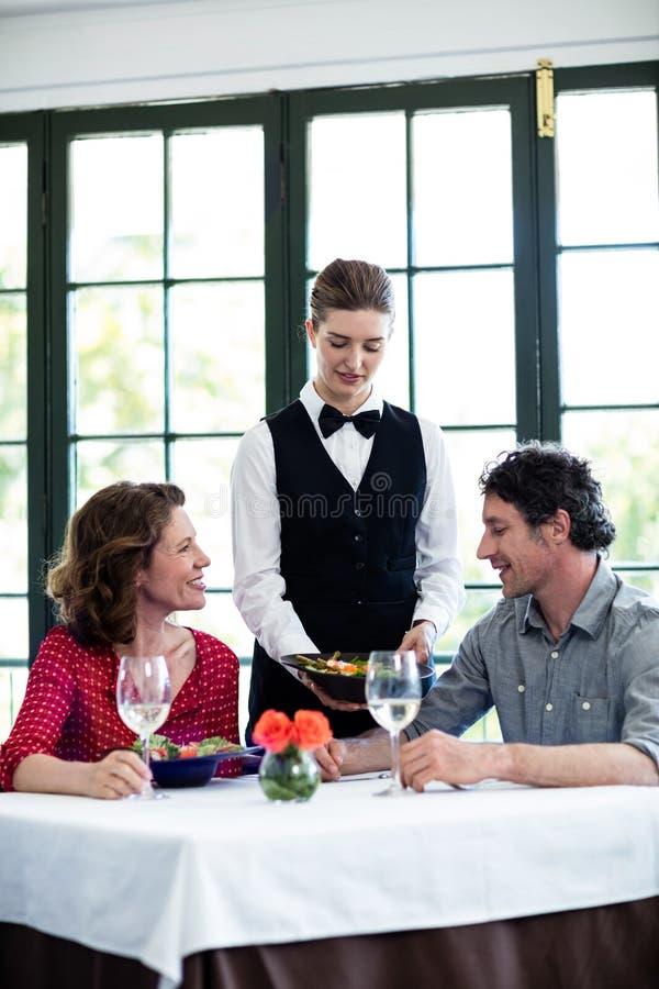 女服务员对夫妇的服务膳食 库存图片