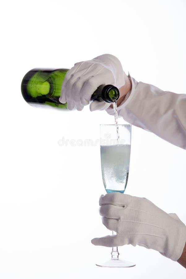 女服务员服务酒 库存图片