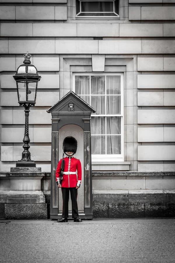 女王的卫兵当班在白金汉宫,官员res 库存照片