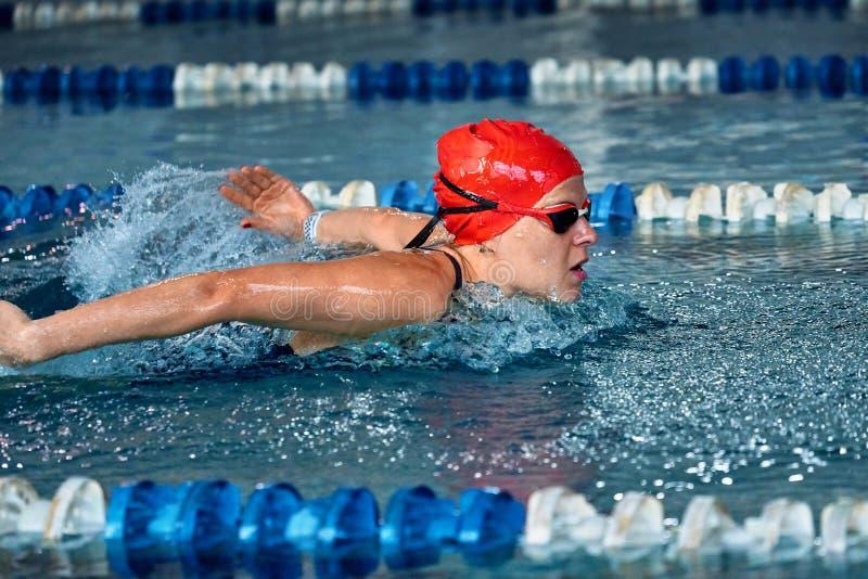 女运动员游泳与蝴蝶样式 免版税库存照片