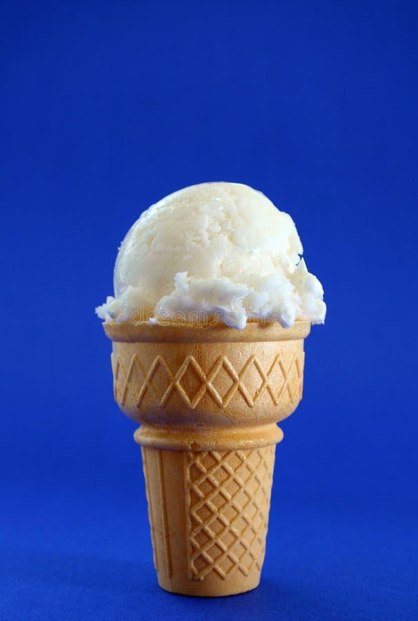 奶油色冰香草 库存照片