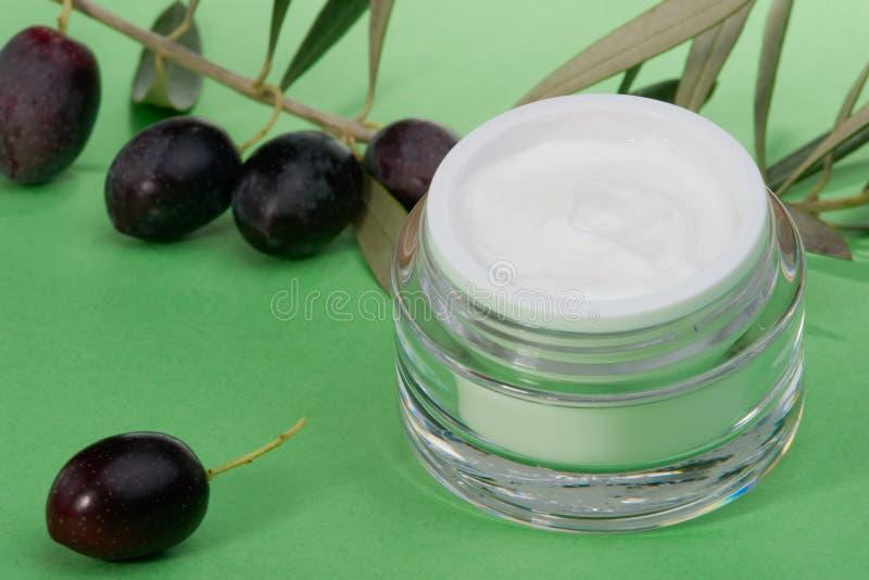 奶油色表面橄榄枝杈 免版税库存图片