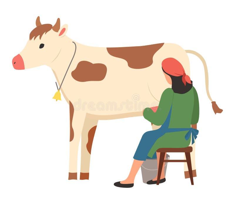 奶牛场动物,妇女奶牛,农厂传染媒介 库存例证