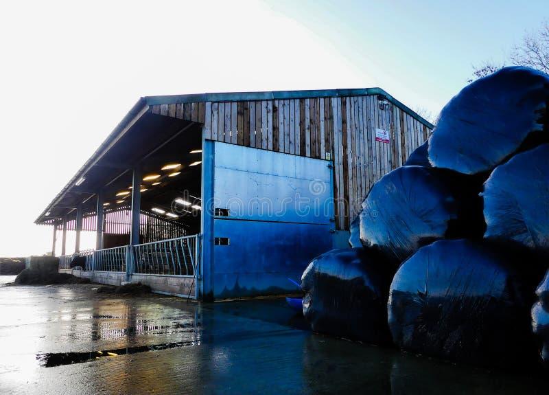 奶牛场棚子,绿色街道,Chorleywood,赫特福德郡 免版税图库摄影
