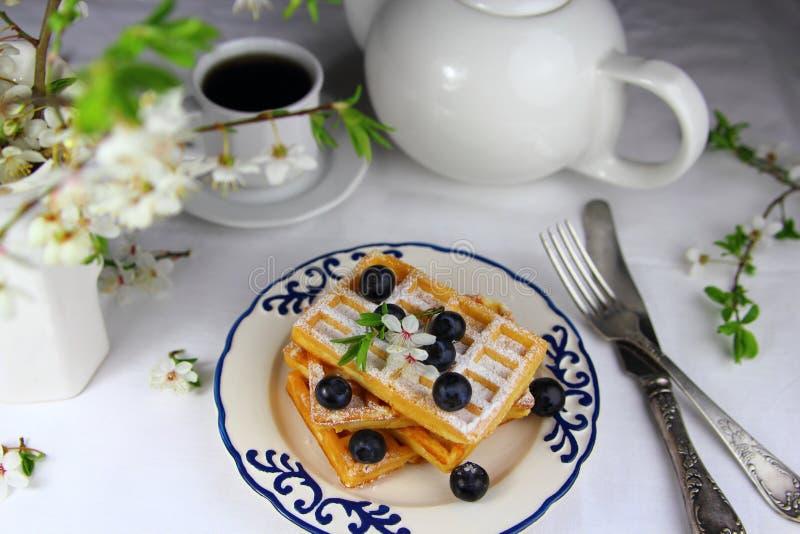 奶蛋烘饼用新鲜的蓝莓 免版税库存照片