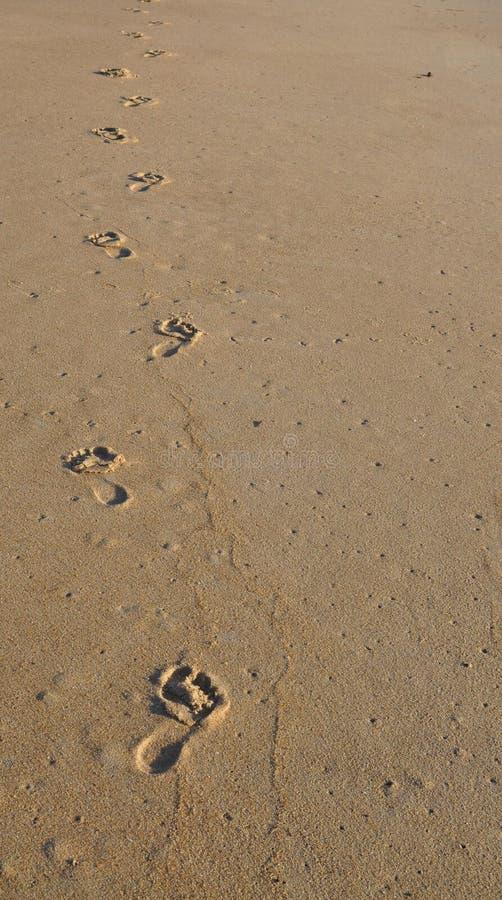 她的在沙子的脚印 库存图片