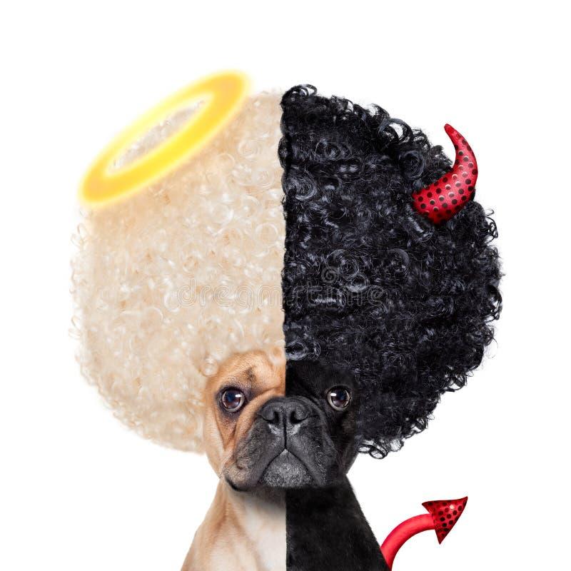 好和坏狗 免版税库存照片