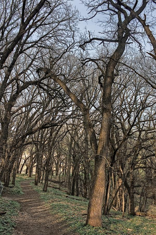 好地球国家公园是都市国家公园在苏族瀑布,南达科他地铁地区边缘 图库摄影