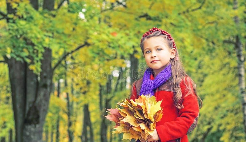 好小女孩的秋天画象红色外套的 在她的手上黄色槭树花束离开 晴朗秋天的日 免版税库存图片