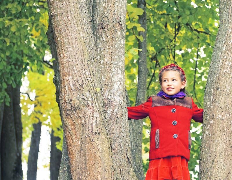 好小女孩的秋天画象红色外套的 在她的手上黄色槭树花束离开 晴朗秋天的日 库存图片