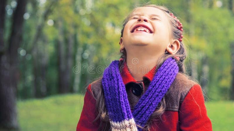 好微笑的女孩的秋天画象红色外套的 在她的手上黄色槭树花束离开 晴朗的秋天 图库摄影