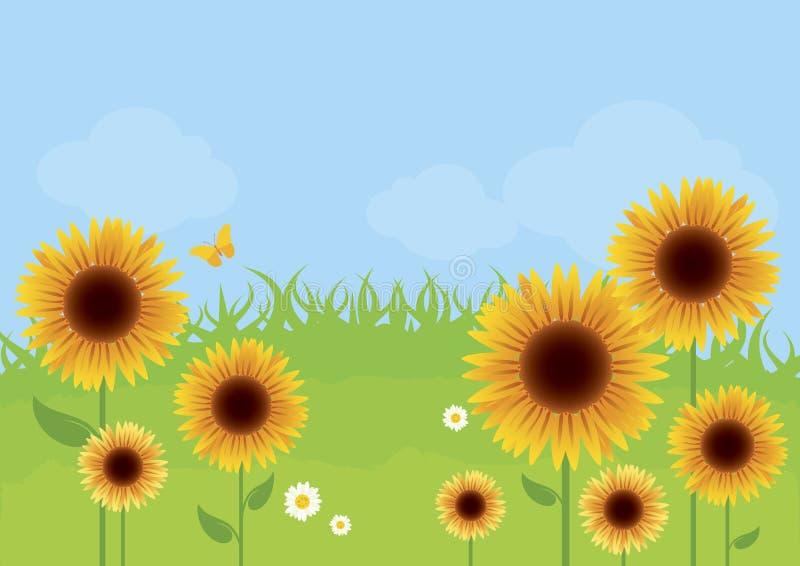 好日子传染媒介例证的向日葵草甸 向量例证
