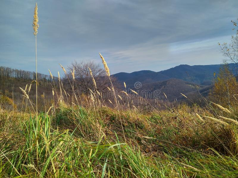 好日子在山的晚秋天 库存图片