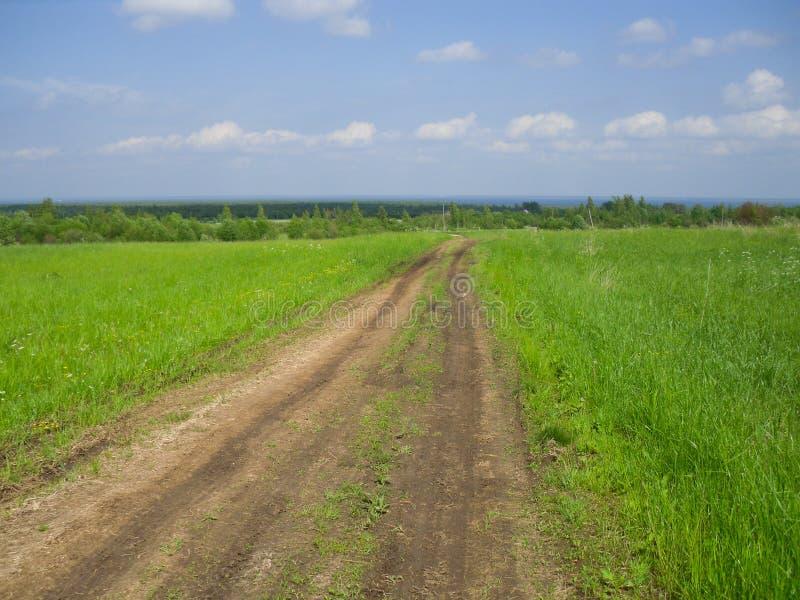 好日子在村庄 自然在俄罗斯 免版税库存照片