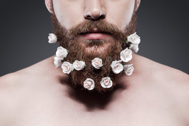 好照料您的胡子! 库存图片