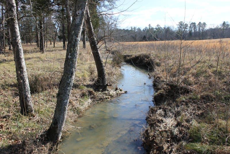 好的小的河和一个晴天 免版税图库摄影