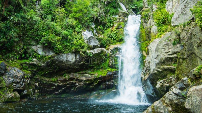 好的瀑布在新西兰 免版税库存图片