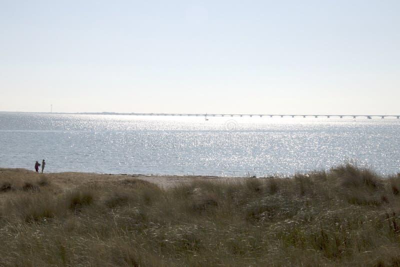好的看法在东斯海尔德河和在距离西兰省桥梁 免版税库存照片