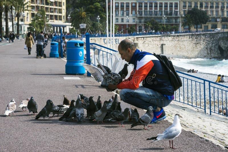好,法国,2019年3月 在一温暖的好日子,一个人喂养城市的鸽子用面包反对绿松石海? 库存照片