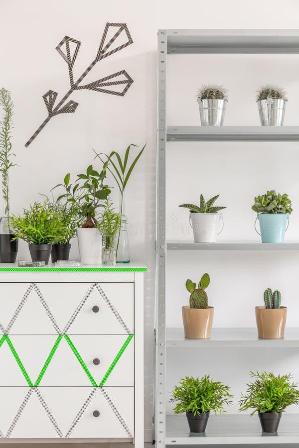 好主意显示您的室内植物 免版税库存图片