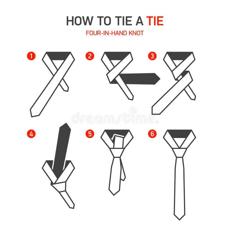 如何栓领带指示 向量例证