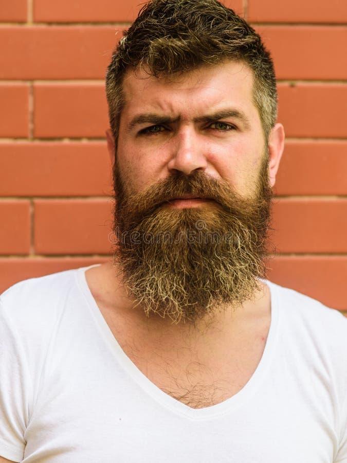 如何留伟大的胡子 胡子修饰从未是很容易 胡子关心把戏将保留您面毛看 免版税图库摄影