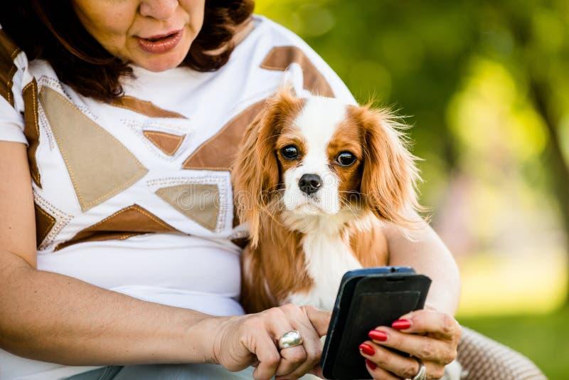 妇女、狗和手机 免版税库存图片