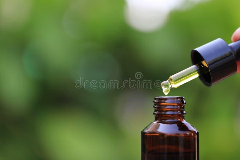 妇女下降到在自然绿色背景、化妆吸移管和温泉概念的瓶的手拿着精油的或维生素C 免版税库存图片