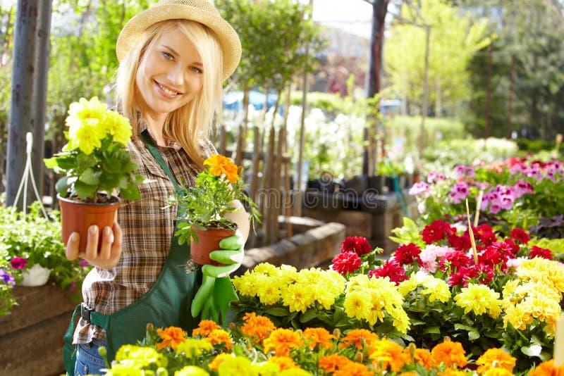 妇女与花一起使用在温室。 免版税库存照片