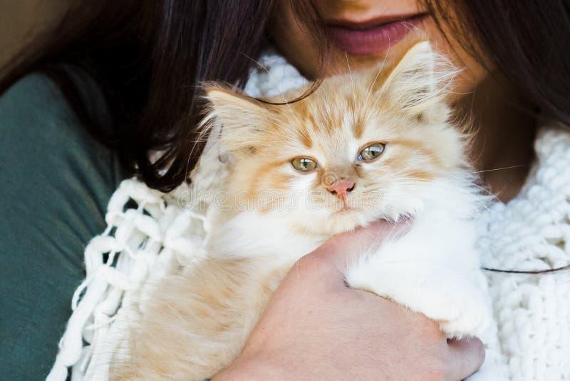 妇女举行的小的橙色小猫 免版税库存图片