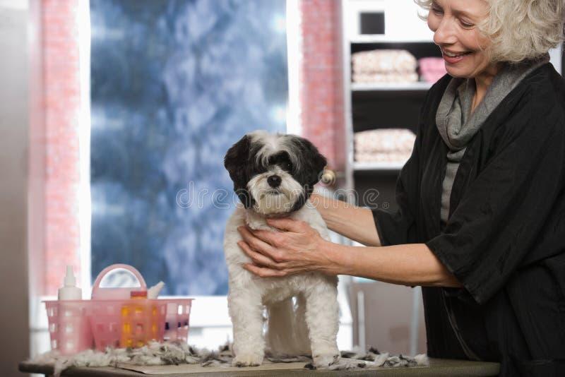 妇女和狗在宠物修饰沙龙 免版税库存照片