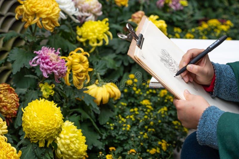 妇女图画菊花花在成都人民公园 图库摄影