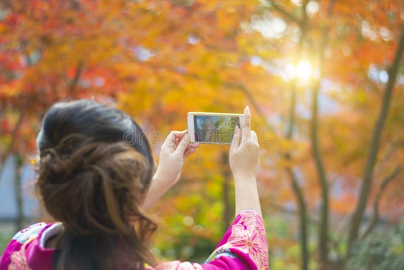 妇女在京都使用智能手机拍秋天场面树照片  免版税库存照片