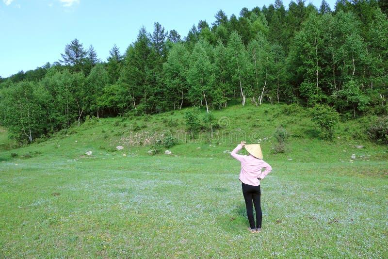 妇女在山森林里 免版税图库摄影