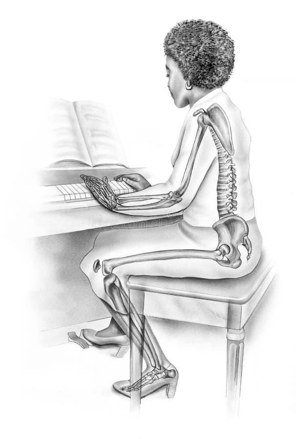 妇女在弹钢琴的妇女每天人生的骨骼结构的` s解剖学 库存例证