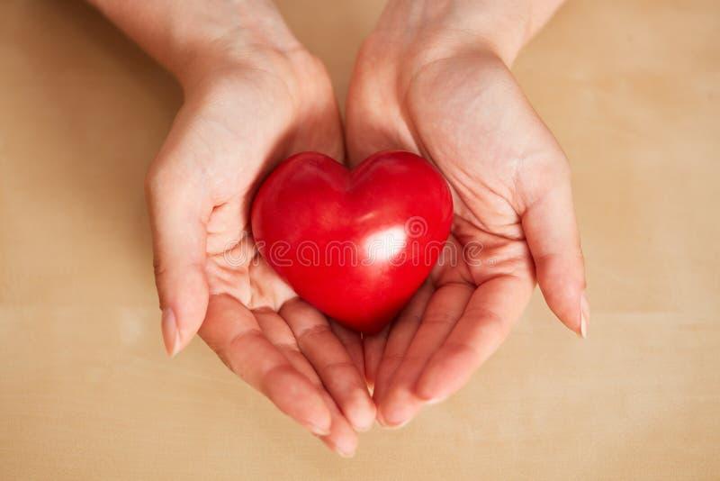 妇女在手上拿着红心作为关心概念 免版税图库摄影