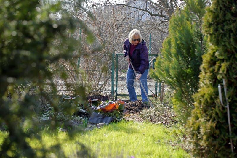 妇女在早期的春天清洗庭院 免版税库存图片
