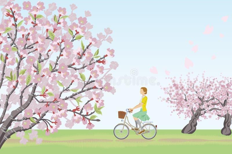 妇女在春天自然的骑马自行车 库存例证
