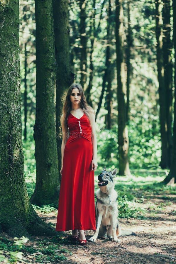 妇女在有狗的森林 库存照片