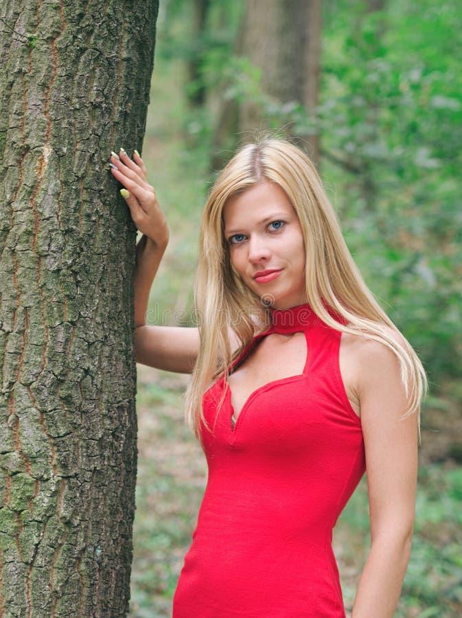 妇女在森林里 免版税图库摄影