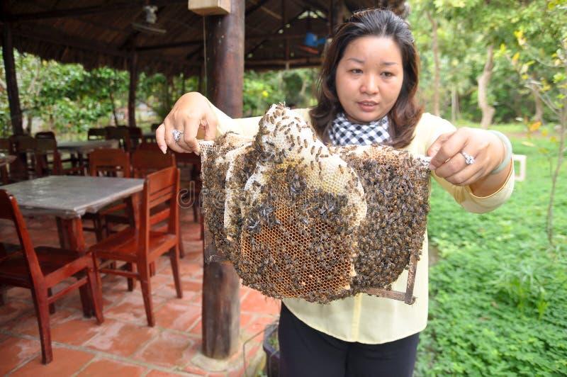 妇女在槟知市显示她的蜂农从她的农场的盘子 免版税图库摄影