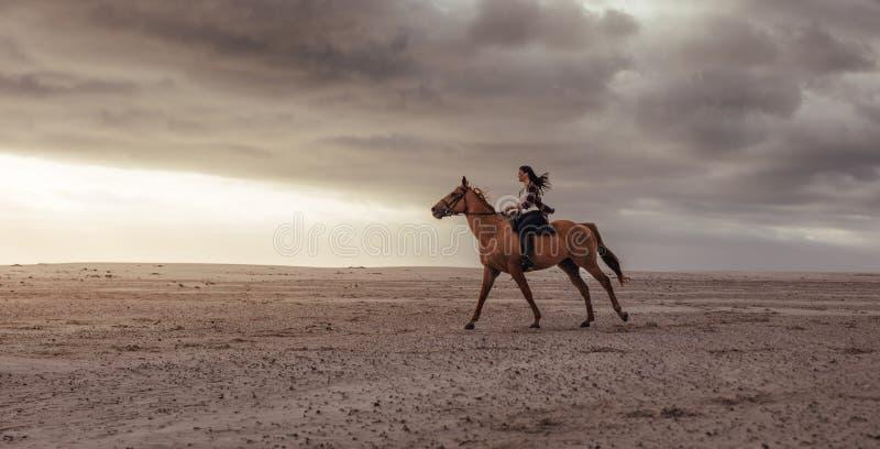 妇女在海滩的马乘驾在日落 库存照片