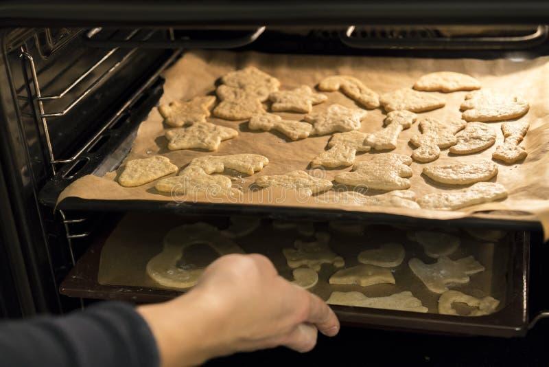 妇女在烤箱投入曲奇饼 免版税库存图片