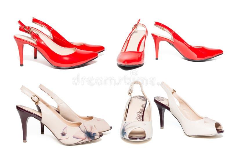 妇女在白色背景的` s鞋子 免版税库存图片