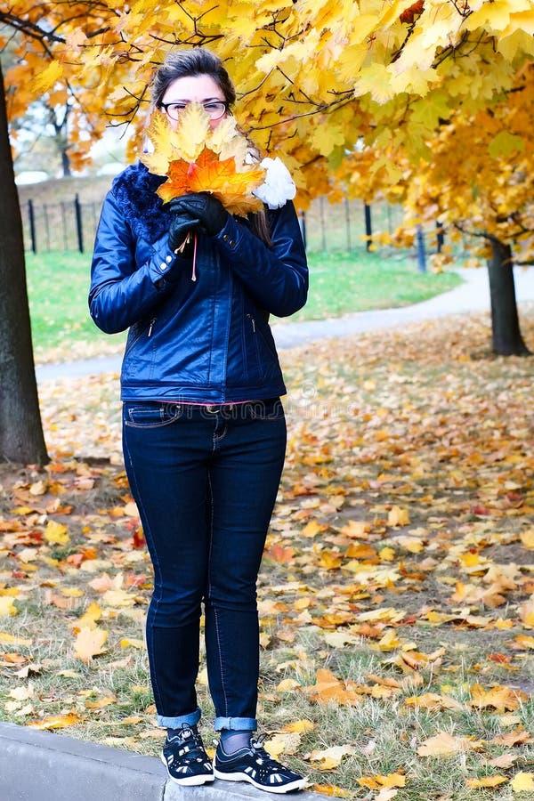 妇女在秋天公园走,收集叶子 垂直的全长画象 图库摄影