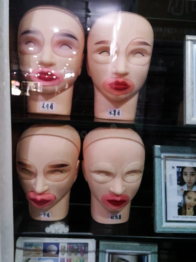 妇女在美容院窗口里显示的` s眼眉塑料模型  免版税库存照片