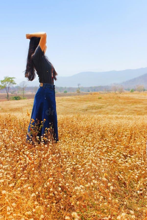 妇女在草甸 库存图片