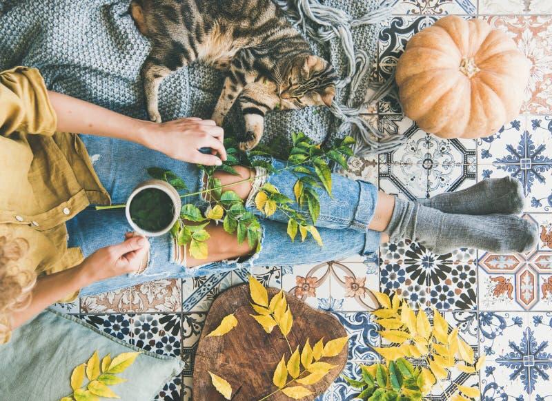 妇女坐与猫和饮用的秋天茶的地板 免版税图库摄影