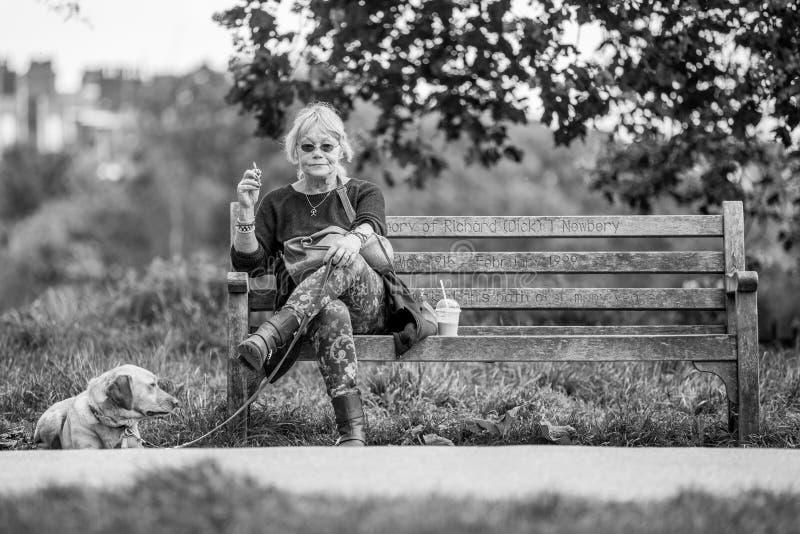 妇女坐公园长椅和等待她的狗进入狗展示 库存照片