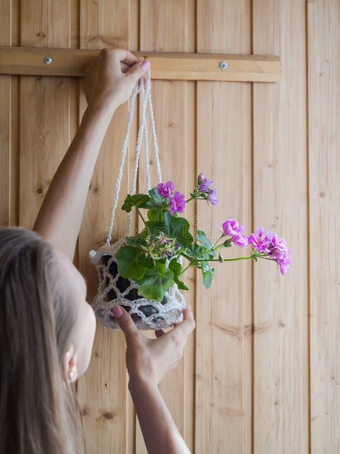 妇女垂悬有一棵盆的植物的一个罐在墙壁上 室内花艺 免版税库存照片